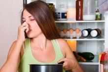Tủ Lạnh Có Mùi Ga, Tủ Lạnh Bị Xì Gas Phải Làm Sao?